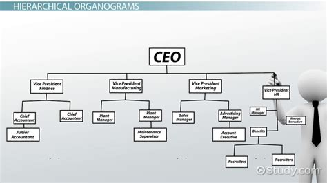 organogram definition structure