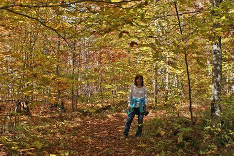 wi washington island foliage lush vibrant hike serious brilliant entire rich colors