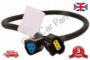 Alternator Wiring Loom For Ford Transit Connect 03  09