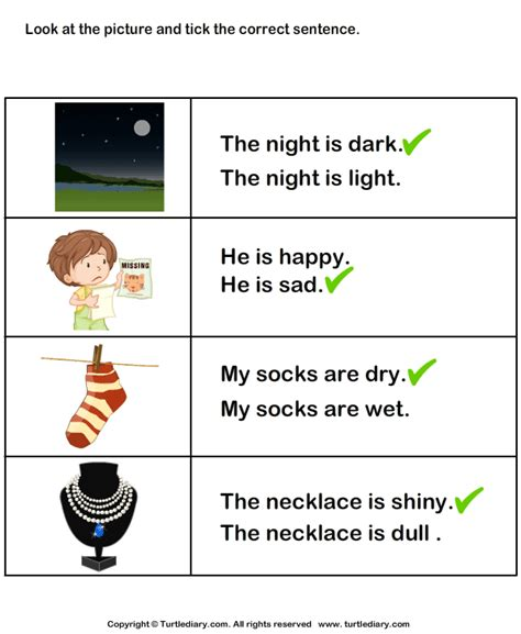 sentence  adjectives   picture worksheet