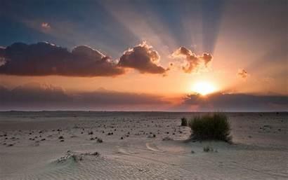 Desert Sunset Sun Sky Bush Sunlight Sand