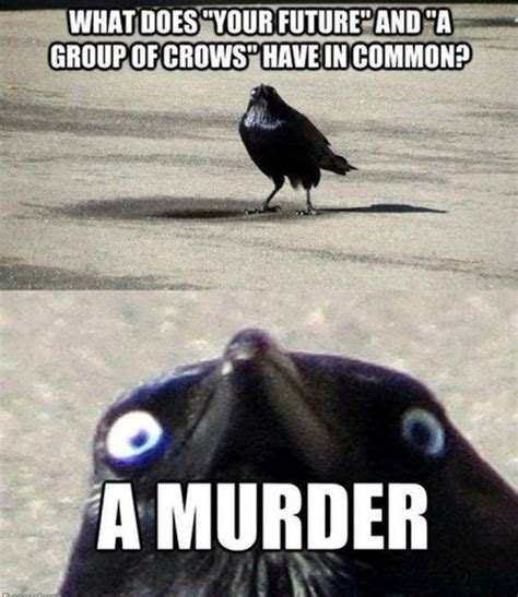 Murder Memes - evening jokes 20 pics
