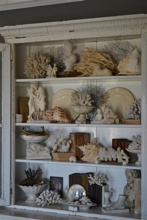 how to display shells ideas 17 best ideas about shell display on pinterest display sea shells sea shells decor and shell art