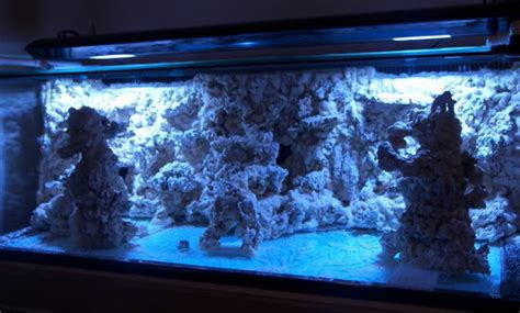 Saltwater Aquascaping Drone Fest
