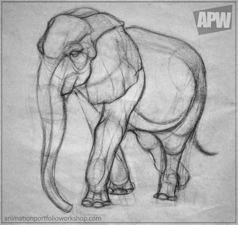 Elephant Drawing On Hand Tumblr