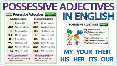 Possessive Adjectives In English  Grammar Lesson Youtube