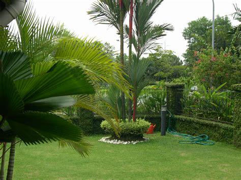 Jardines Residenciales  Diseño De Jardines En Monterrey