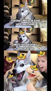 106 best images about dog puns on Pinterest | Jokes, My ...