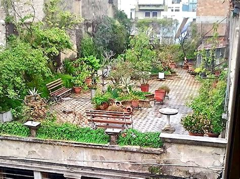 rooftop container gardening grow edibles on rooftops container gardening
