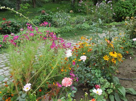 preparing  garden  winter overwintering plants