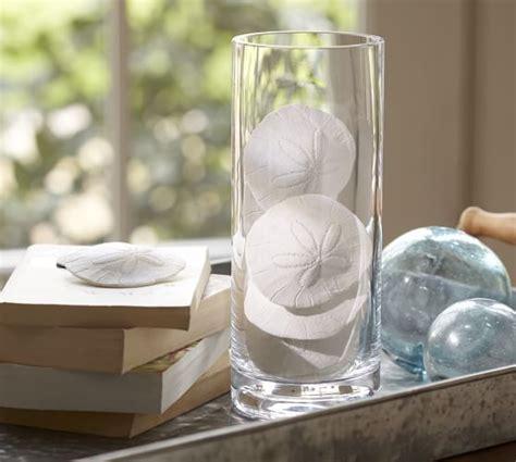 Faux Sand Dollar Vase Filler  Pottery Barn