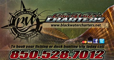 hunting fishing florida duck blackwater north charters alligator scalloping rates island st charter piney gator point freshwater george panacea inshore