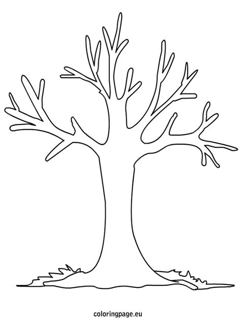 tree template coloring sheets shrub coloring book pages fall tree page grig3 org