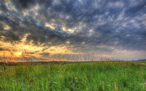 campo de hierba oscuro nubes sunset fondos de pantalla
