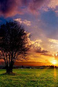 Sunset iPhone Wallpaper Nature