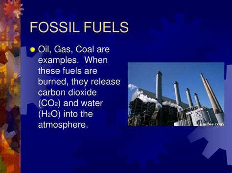 Ppt The Oxygen Carbon Dioxide Cycle Powerpoint
