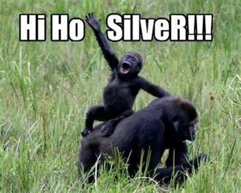 Funny Monkey Memes - funny monkey meme 28 images funny monkey memes memes funny monkey memes am i a monkey or a