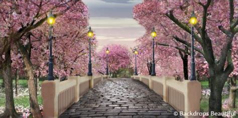 Backdrops Beautiful  Hand Painted Scenic Backdrop Rentals