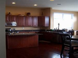 best color for kitchen walls with dark cabinets With best paint color for kitchen with dark cabinets