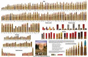 Cartridge Comparison Guide The Ultimate Hunting And
