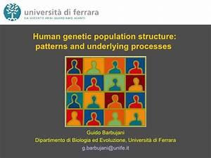 Human Genetic Diversity  Eshg Barcelona