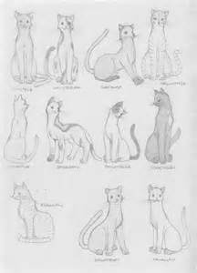 Warrior Cat Drawings