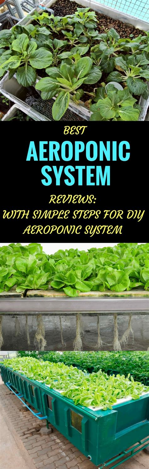 Best Aeroponic System Reviews For 2018 With Simple Steps