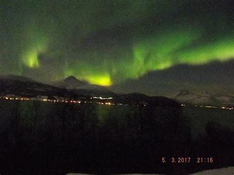 tromso norway northern lights tour the dancing lights picture of northern lights tromso