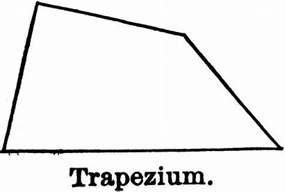 Trapezium Quadrilateral Clipart Sides Parallel Rectangle Quadrilaterals