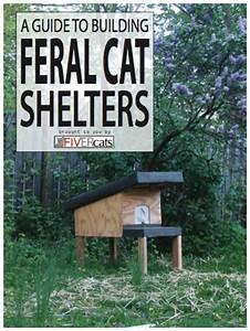 Feral cat house plans free, harley davidson rocking horse