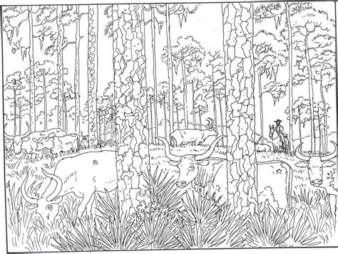 forest woods coloring page  printer friendly versions