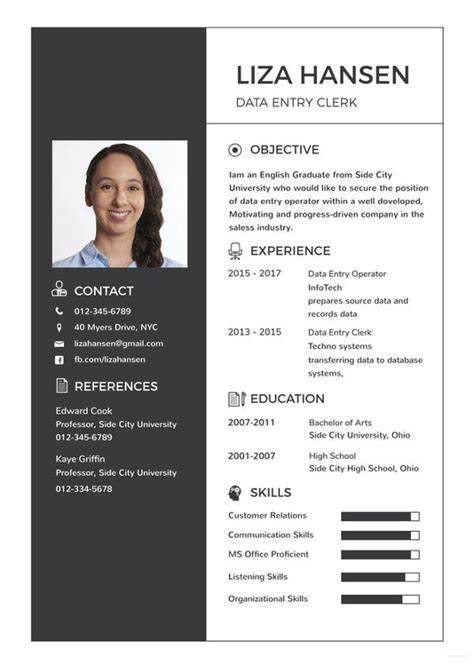 data entry resume template   word excel