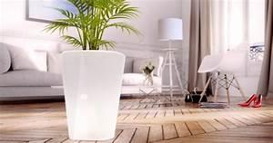 les accessoires connectes pour vos plantes With chambre bébé design avec pot de fleur connecté