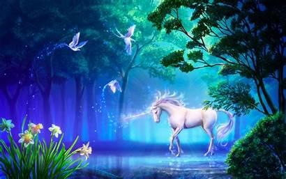 Edinorog Unicorn Fairies Nature Unicorns Fairy Magical