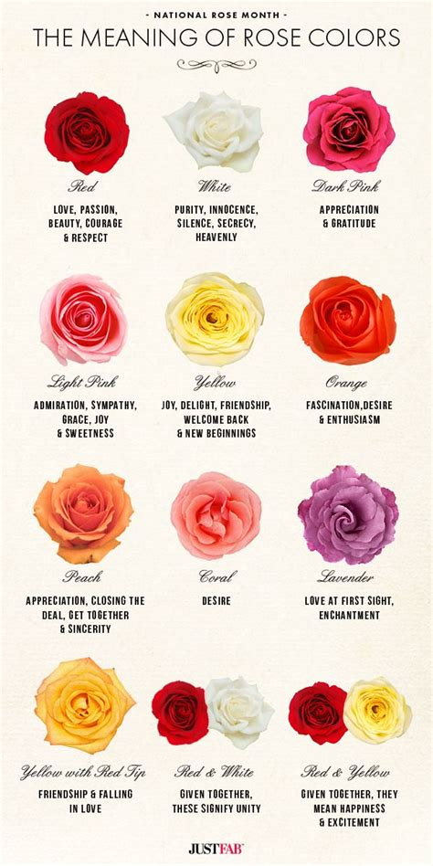 flower color meanings color meanings on flower meanings