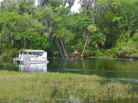 rainbow river cabin rentals rainbow river home directly on dive vrbo