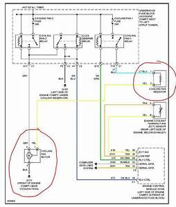 Richn City Goblin Wiring Diagram