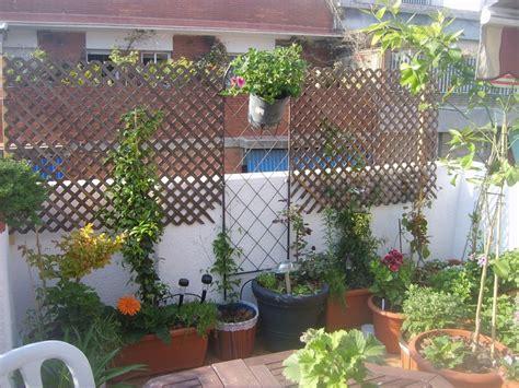 Balkon Gemüse Pflanzen by Balkon Sichtschutz Pfla Pflanzen Sichtschutz Balkon On