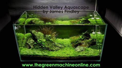 The Green Machine Aquascape by Valley Aquascape The Green Machine