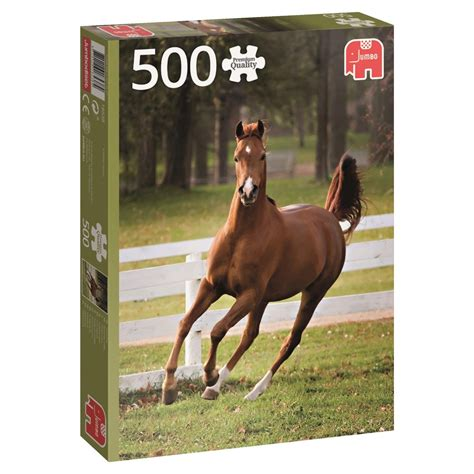 Year Of The Horse Puzzles