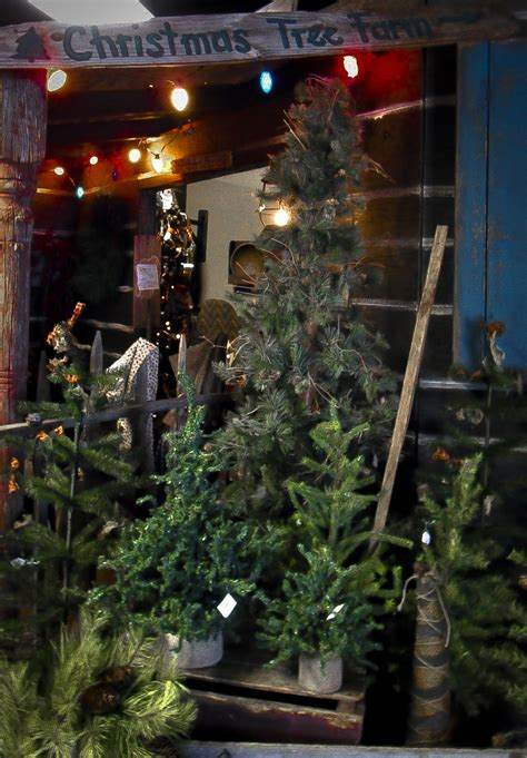 christmas tree lot ideas 1000 images about tree lot on tree farm trees and trees