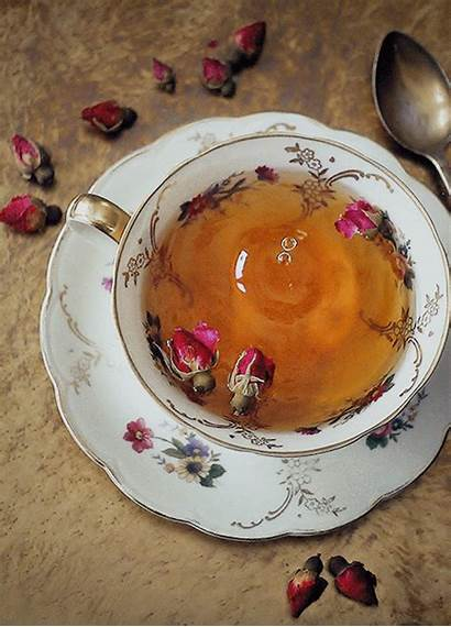 Instagram Tea Cinemagraphs Tee Kitchen Butteryplanet Gemerkt
