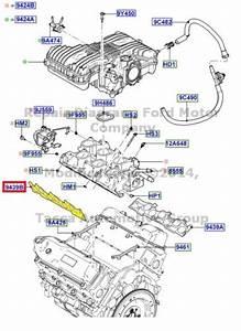 3 8l Mustang V6  Windstorm Manifold Kit