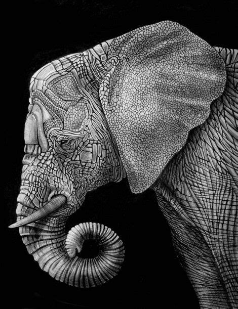 10 best images about Zentangle Elephants on Pinterest | The beast, Design styles and Coloring pages