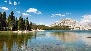 Landscape, Nature, Lake, Hills, Forest, Pine, Trees, Yosemite, National, Park, California