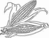 Corn Coloring Clipart Pages Cartoon Clip Drawing Field Printable Stalk Svg Transparent Drawings Pop Getdrawings Cob Clipartix Sheets Sketches Party sketch template