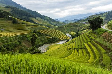9 exles of terrace farming around the world mnn nature network