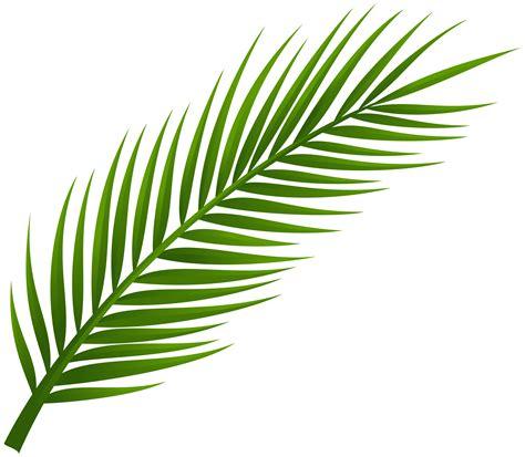 palm branch cliparts   clip art  clip art  clipart library