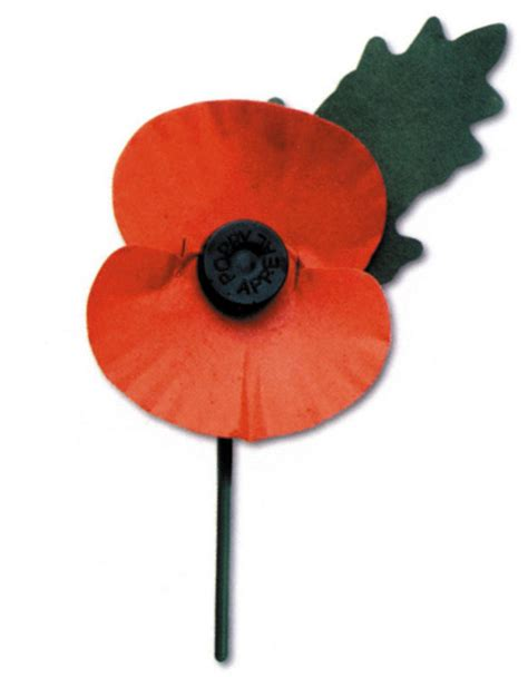 remberance poppy michael penning health and safety minister says wearing poppy with a pin is not a safety hazard