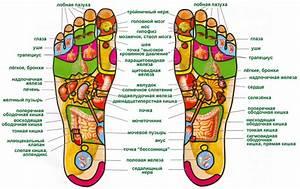 Биологические активные точки на теле человека при гипертонии